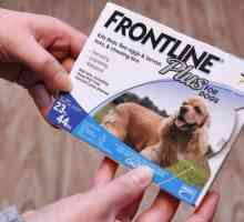 Você pode usar Frontline em seres humanos?