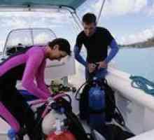 Qual é o custo de arranque para um negócio mergulho?