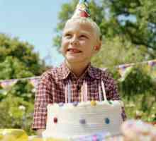 Idéias para o 7º aniversário de um menino